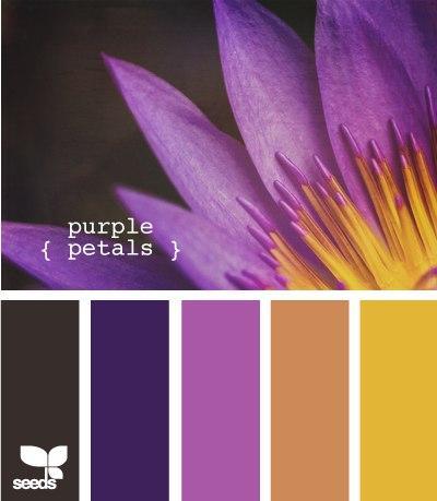 Самые лучшие сочетание цветов