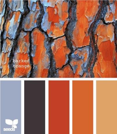 С каким цветом сочетается терракотовый цвет в интерьере