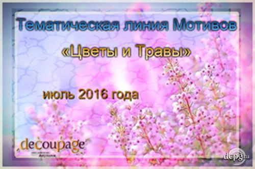 201614.jpg