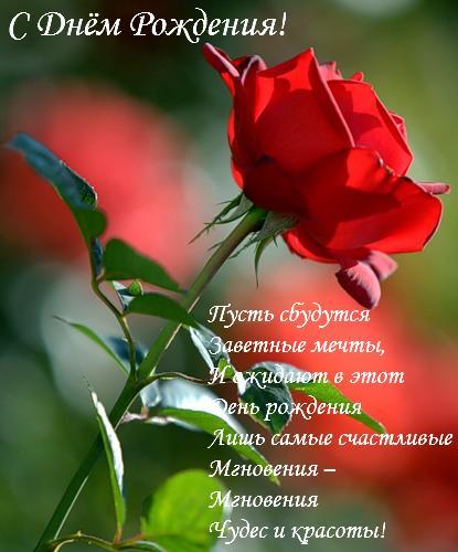 http://dcpg.ru/images/pics/entries/79996.jpg