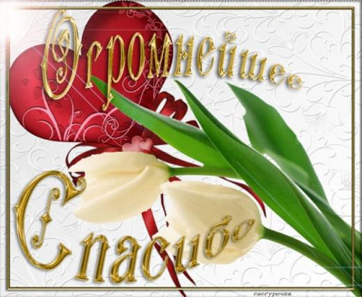 http://dcpg.ru/images/pics/entries/86418.jpg
